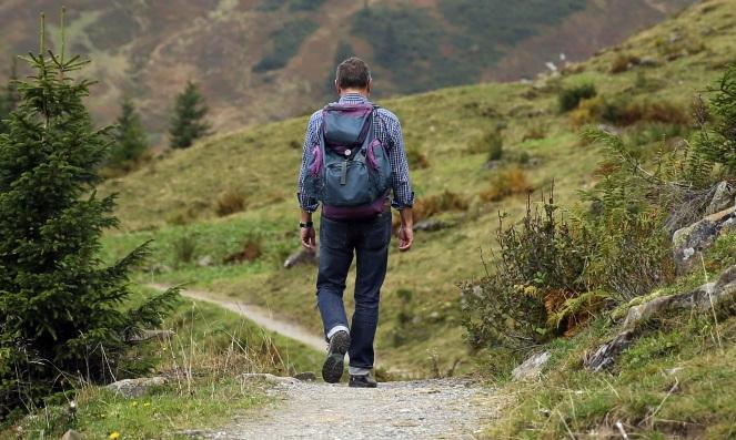 landscape-nature-path-wilderness-walking-mountain-934320-pxhere.com