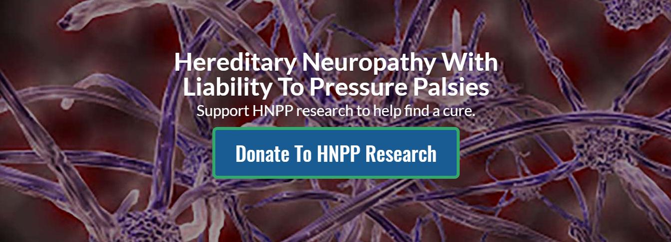 HNF fund